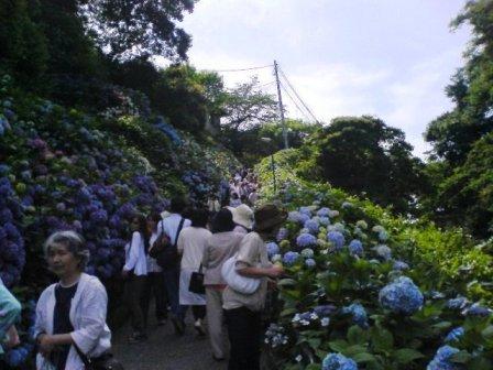 鎌倉2008 002.jpg