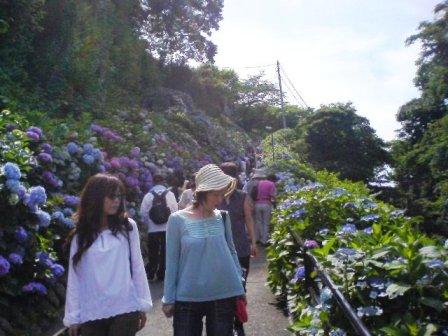 鎌倉2008 004.jpg