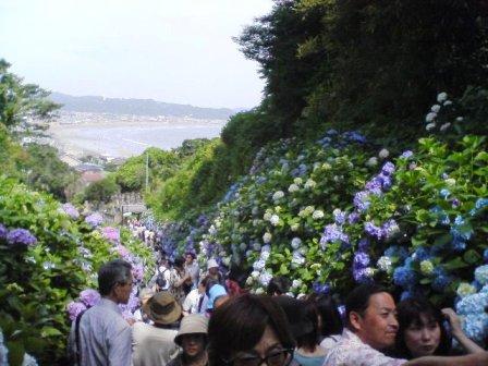 鎌倉2008 007.jpg